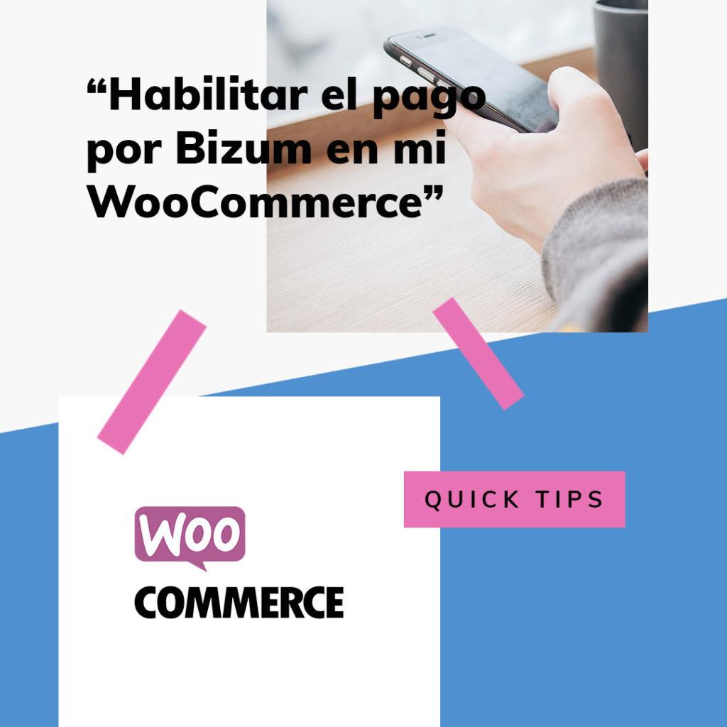 pago por Bizum en tu WooCommerce • Cómo permitir el pago por Bizum en tu WooCommerce